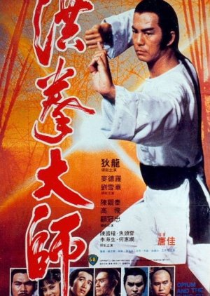 image of drama The Kung Fu Master (1994) [TWDRAMA]